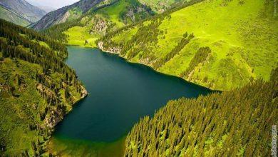 Photo of تصاویری از شفاف ترین آب جهان