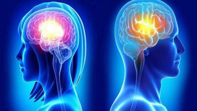 Photo of تفاوت بین مغز زنان و مردان