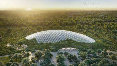 Photo of بزرگترین گلخانه جهان برای جذب گردشگر