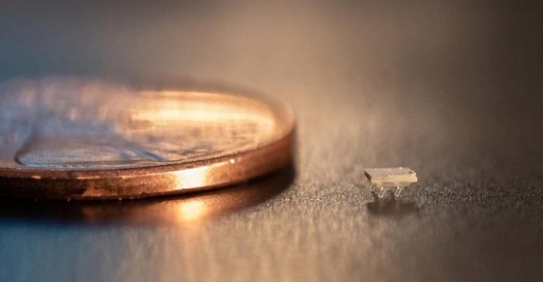 ربات های مورچه ای برای درمان